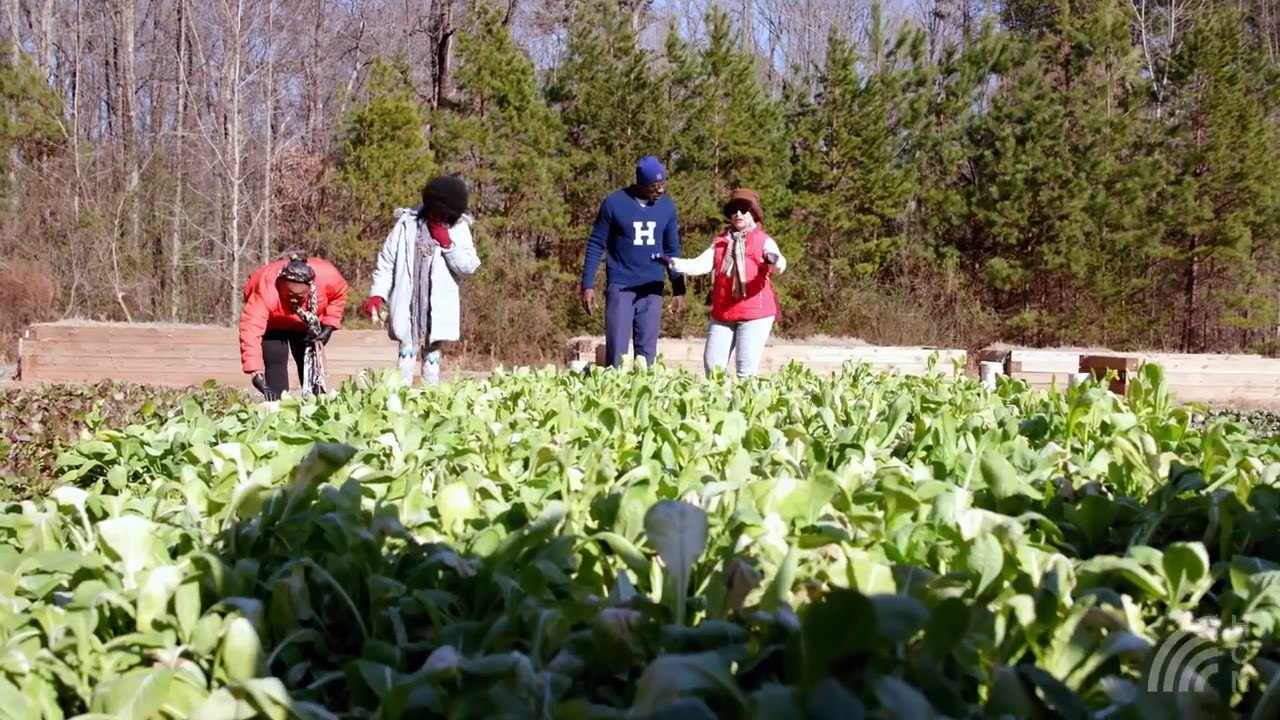 Healthy Communities News – Episode 1: Two communities find healthy solutions that work