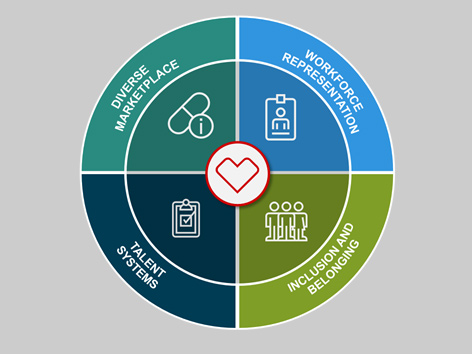 A graphic representing CVS Health Supplier Diversity values: Diverse marketplace, workforce representation, talent systems, and inclusion and belonging.