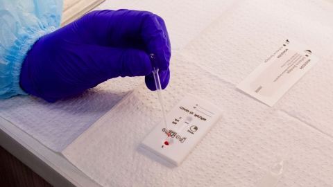 A lab technician processes a sample for antibody testing.